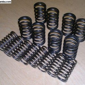 5507966 25hp douple valve springs pre May 52